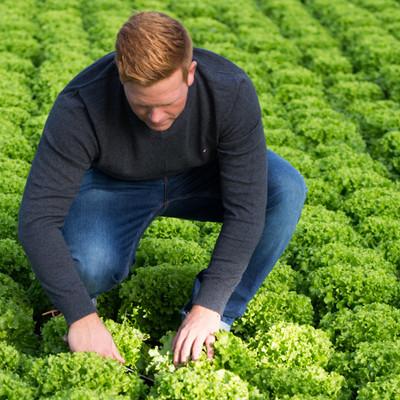 Philip Mayer von Bio-Mayer baut Gemüse in Bio-Qualität an.