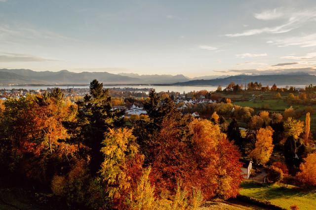 Blick über die bunt gefärbte Landschaft und auf den Bodensee