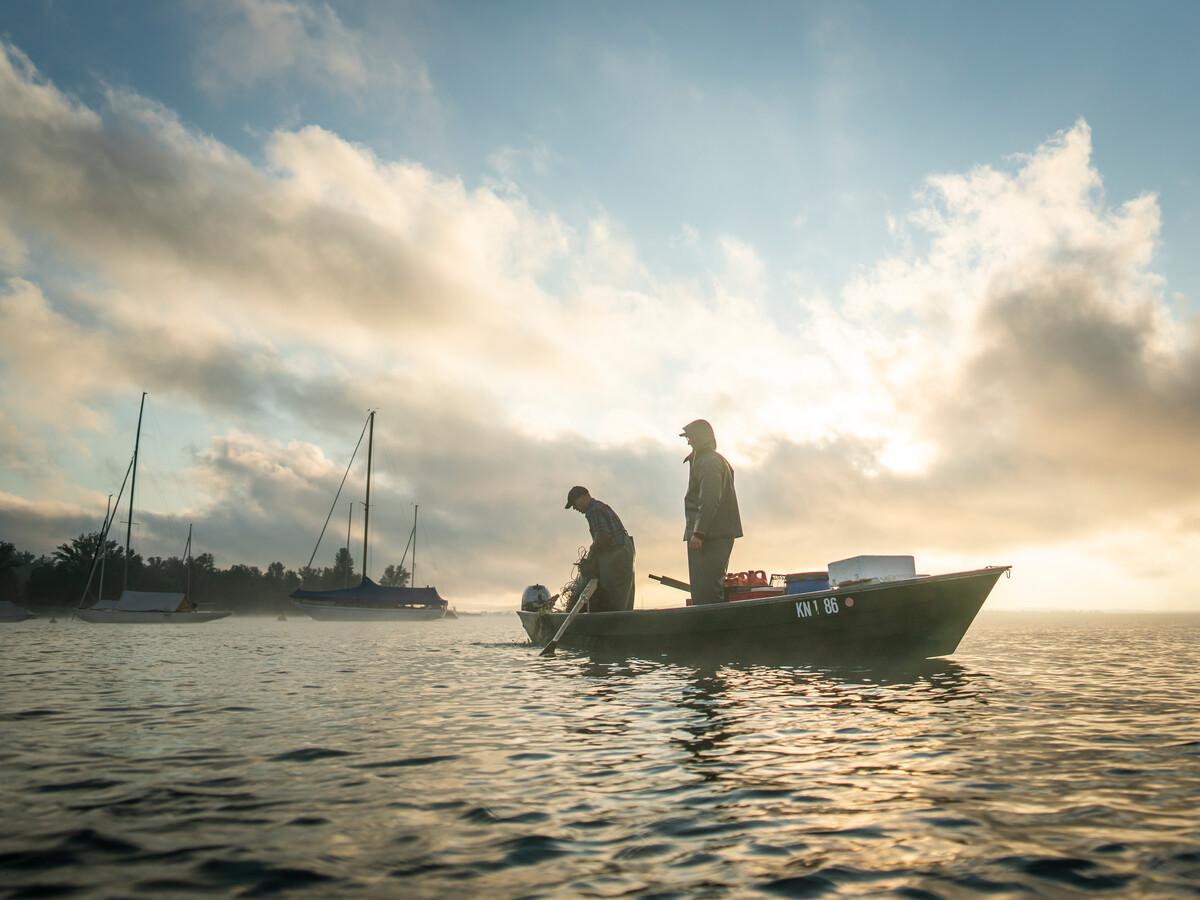 Unterwegs mit dem Bodenseefischer