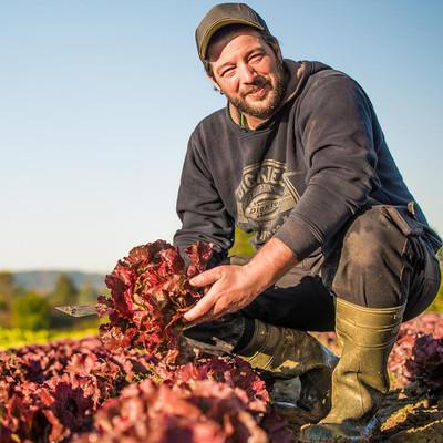 Sebastian Günther vom Spiesshaldenhof pflanzt vor allem Salate und Wurzelgemüse an.